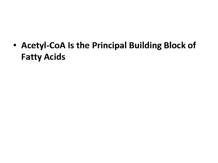 • Acetyl-Co. A Is the Principal Building Block of Fatty Acids
