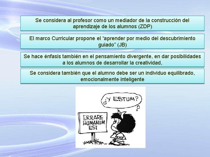 Se considera al profesor como un mediador de la construcción del aprendizaje de los