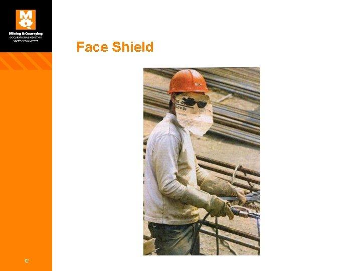 Face Shield 12