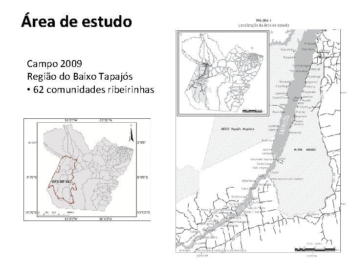 Área de estudo Campo 2009 Região do Baixo Tapajós • 62 comunidades ribeirinhas
