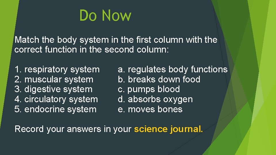 Do Now Match the body system in the first column with the correct function