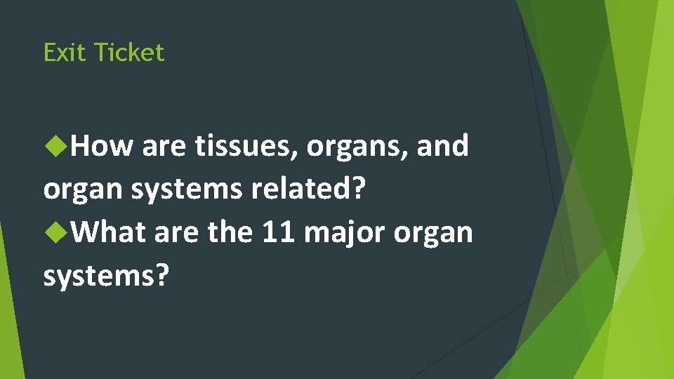 Exit Ticket How are tissues, organs, and organ systems related? What are the 11