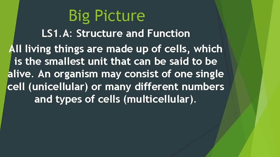 Big Picture LS 1. A: Structure and Function All living things are made up