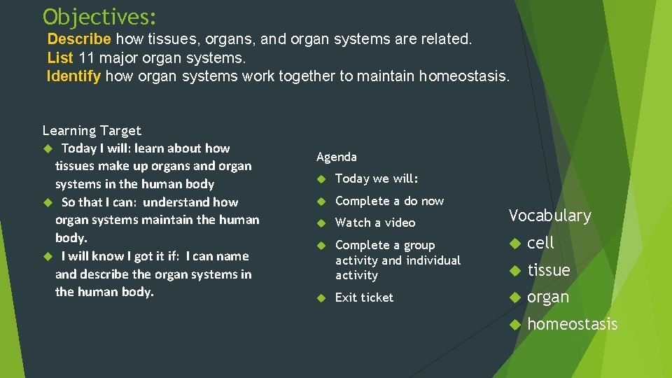 Objectives: Describe how tissues, organs, and organ systems are related. List 11 major organ