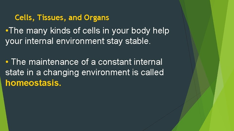 Cells, Tissues, and Organs • The many kinds of cells in your body help