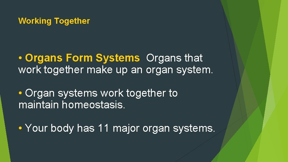 Working Together • Organs Form Systems Organs that work together make up an organ