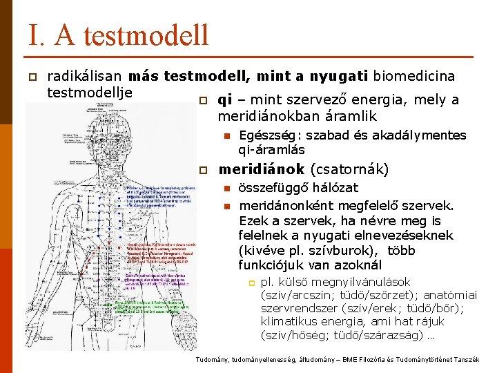 I. A testmodell p radikálisan más testmodell, mint a nyugati biomedicina testmodellje p qi