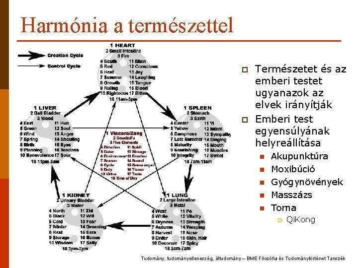 Harmónia a természettel p p Természetet és az emberi testet ugyanazok az elvek irányítják
