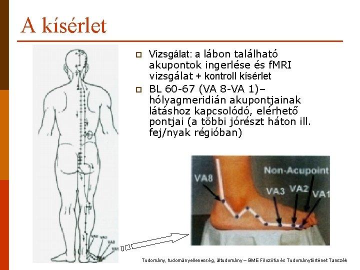 A kísérlet p p Vizsgálat: a lábon található akupontok ingerlése és f. MRI vizsgálat