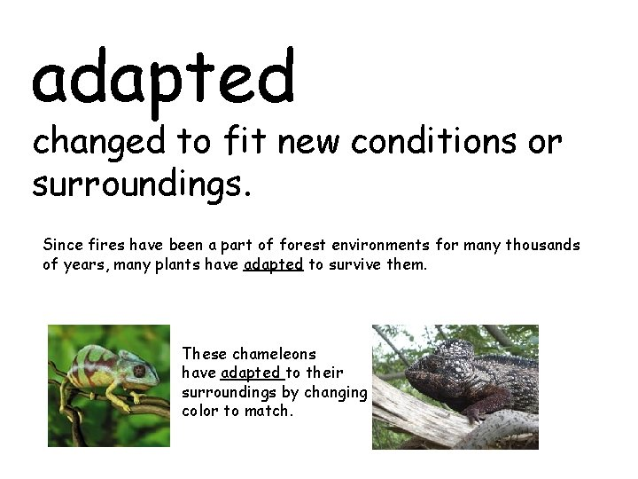adapted changed to fit new conditions or surroundings. Since fires have been a part