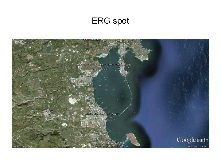 ERG spot