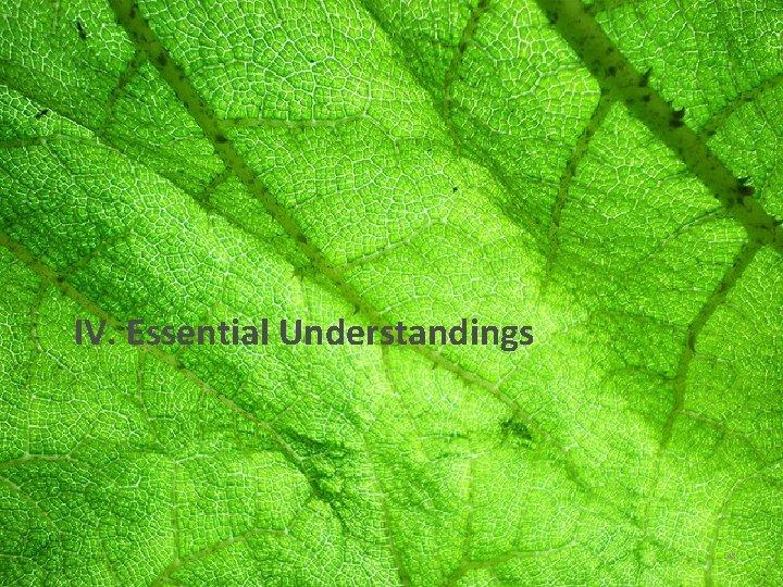 IV. Essential Understandings 48