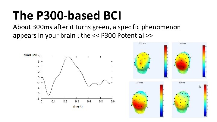 The P 300 -based BCI About 300 ms after it turns green, a specific