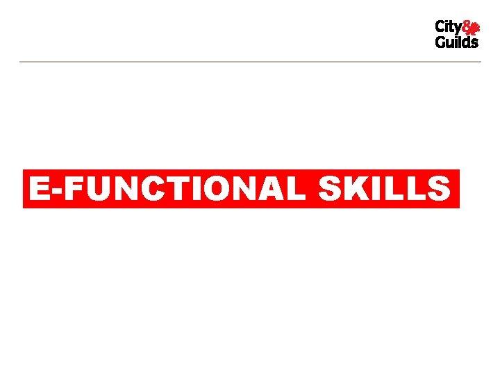 E-FUNCTIONAL SKILLS