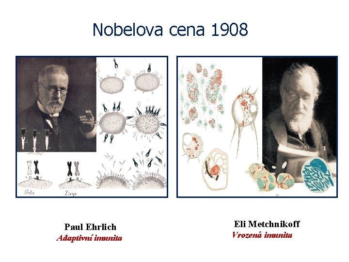 Nobelova cena 1908 Paul Ehrlich Adaptivní imunita Eli Metchnikoff Vrozená imunita