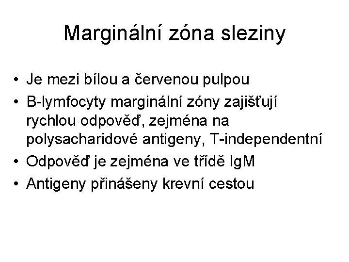 Marginální zóna sleziny • Je mezi bílou a červenou pulpou • B-lymfocyty marginální zóny
