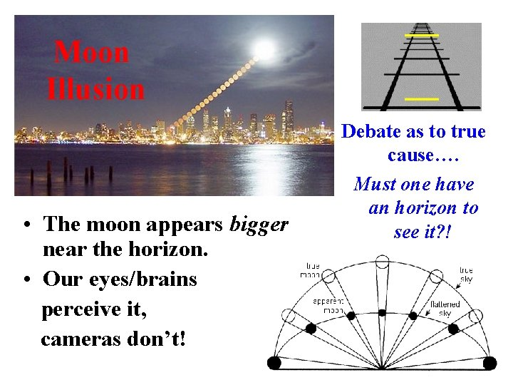 Moon Illusion • The moon appears bigger near the horizon. • Our eyes/brains perceive