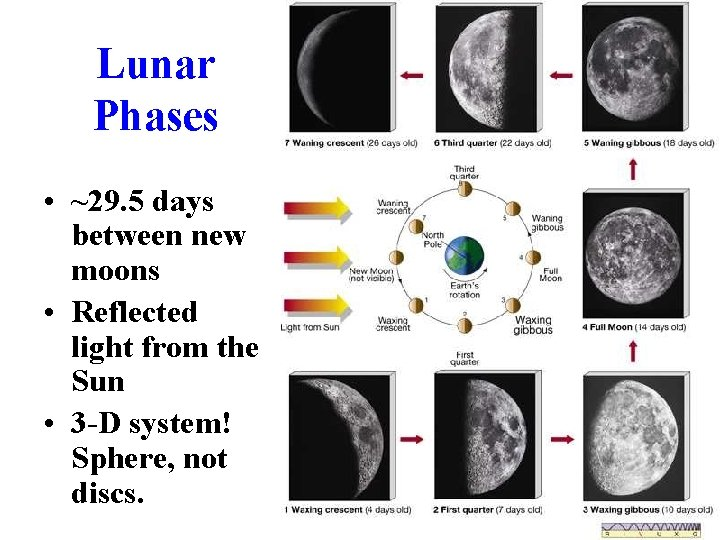 Lunar Phases • ~29. 5 days between new moons • Reflected light from the