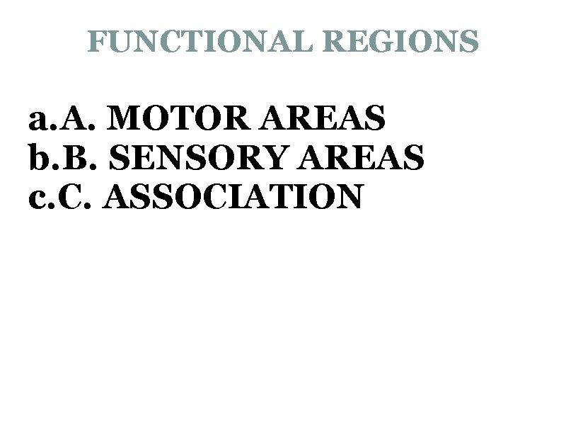 FUNCTIONAL REGIONS a. A. MOTOR AREAS b. B. SENSORY AREAS c. C. ASSOCIATION