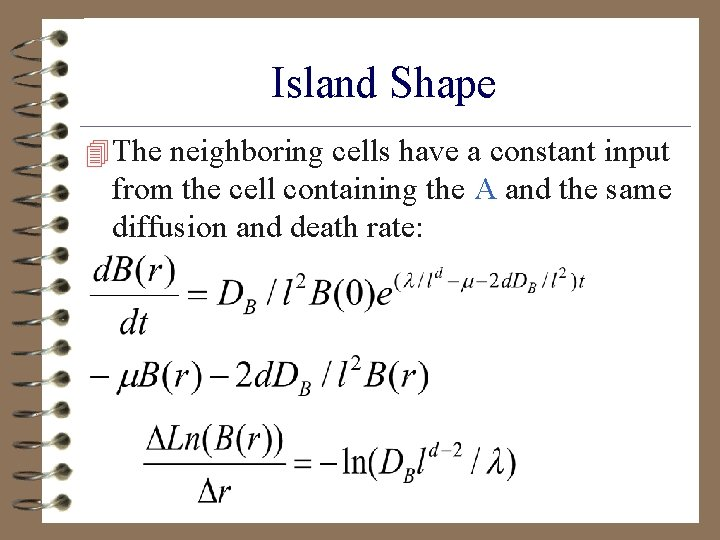 Island Shape 4 The neighboring cells have a constant input from the cell containing