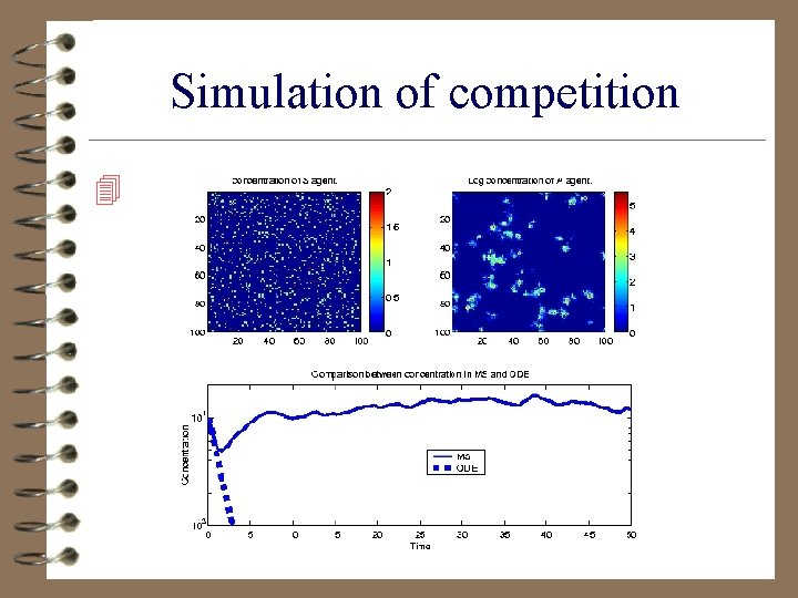 Simulation of competition 4