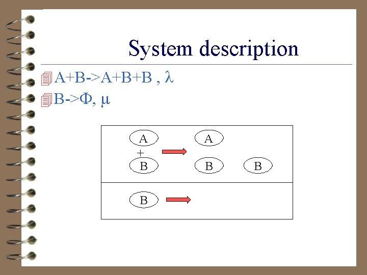 System description 4 A+B->A+B+B , 4 B-> , A + B B A B