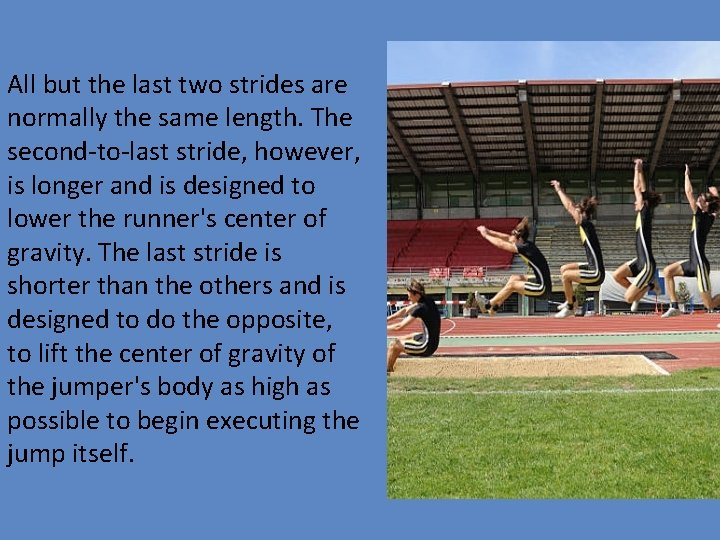 All but the last two strides are normally the same length. The second‐to‐last stride,