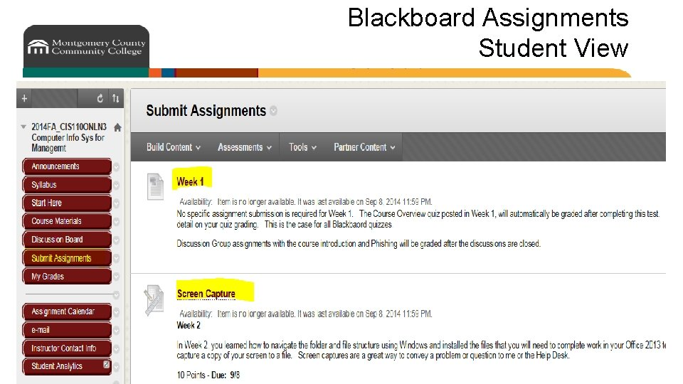 Blackboard Assignments Student View