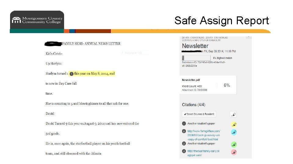 Safe Assign Report