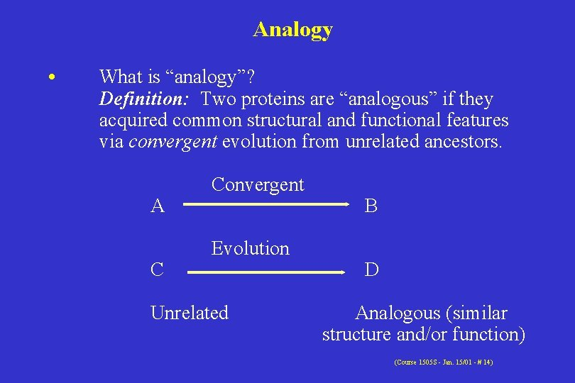 """Analogy • What is """"analogy""""? Definition: Two proteins are """"analogous"""" if they acquired common"""