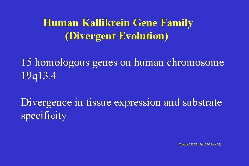 Human Kallikrein Gene Family (Divergent Evolution) 15 homologous genes on human chromosome 19 q
