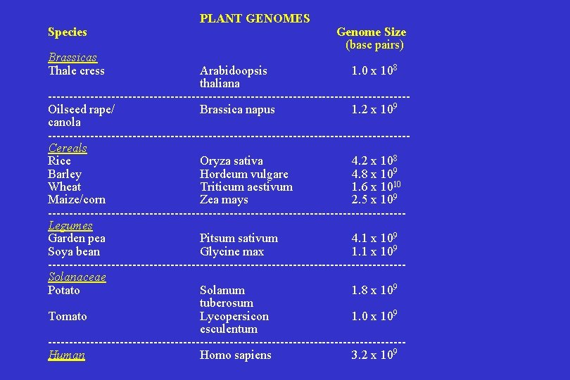 Species Brassicas Thale cress PLANT GENOMES Genome Size (base pairs) Arabidoopsis 1. 0 x