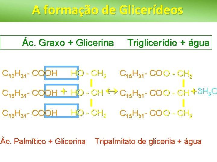A formação de Glicerídeos Ác. Graxo + Glicerina C 15 H 31 - COOH