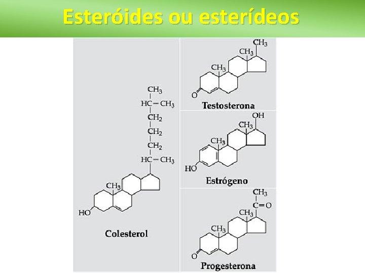 Esteróides ou esterídeos