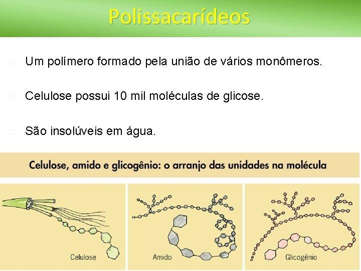 Polissacarídeos Um polímero formado pela união de vários monômeros. Celulose possui 10 mil moléculas