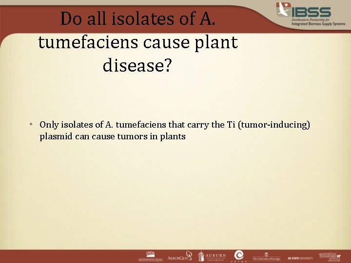 Do all isolates of A. tumefaciens cause plant disease? • Only isolates of A.