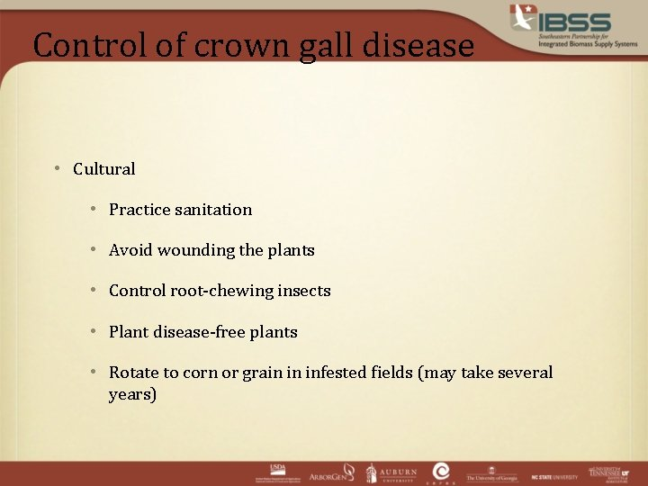 Control of crown gall disease • Cultural • Practice sanitation • Avoid wounding the