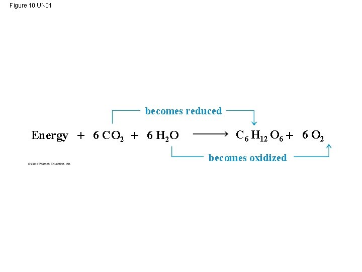 Figure 10. UN 01 becomes reduced Energy 6 CO 2 6 H 2 O