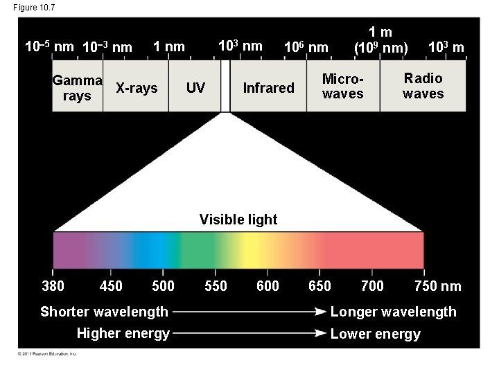 Figure 10. 7 10 5 nm 10 3 nm 103 1 nm Gamma X-rays