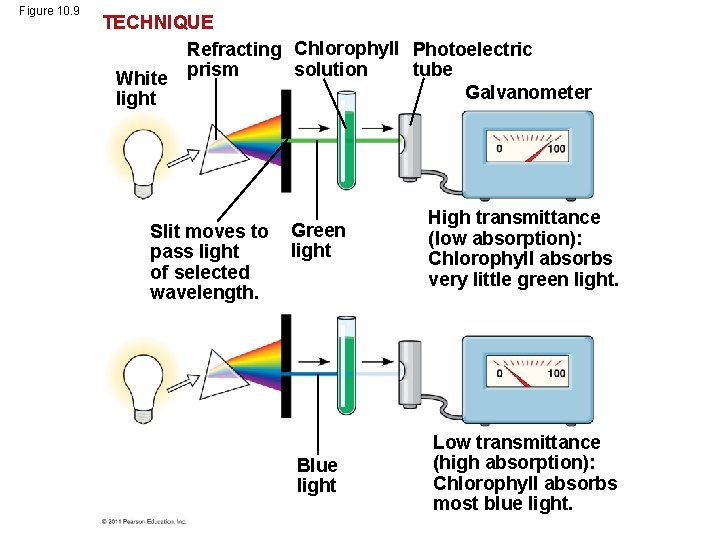 Figure 10. 9 TECHNIQUE Refracting Chlorophyll Photoelectric solution tube White prism Galvanometer light Slit