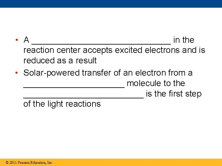 • A _______________ in the reaction center accepts excited electrons and is reduced