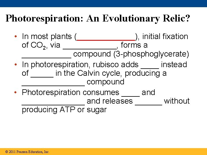 Photorespiration: An Evolutionary Relic? • In most plants (_______), initial fixation of CO 2,