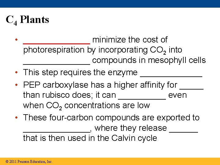 C 4 Plants • _______ minimize the cost of photorespiration by incorporating CO 2
