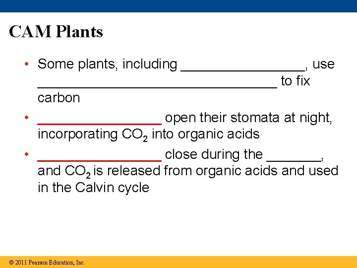CAM Plants • Some plants, including ________, use ________________ to fix carbon • ________