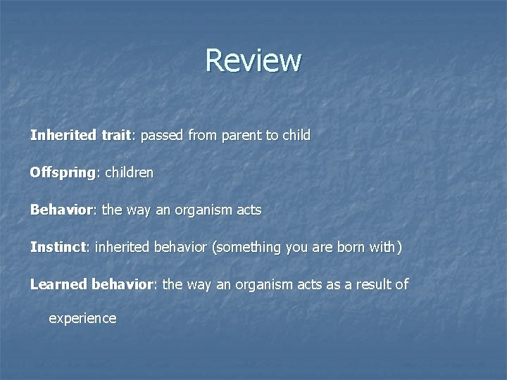 Review Inherited trait: passed from parent to child Offspring: children Behavior: the way an