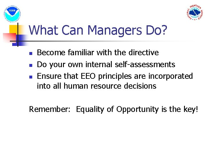 What Can Managers Do? n n n Become familiar with the directive Do your