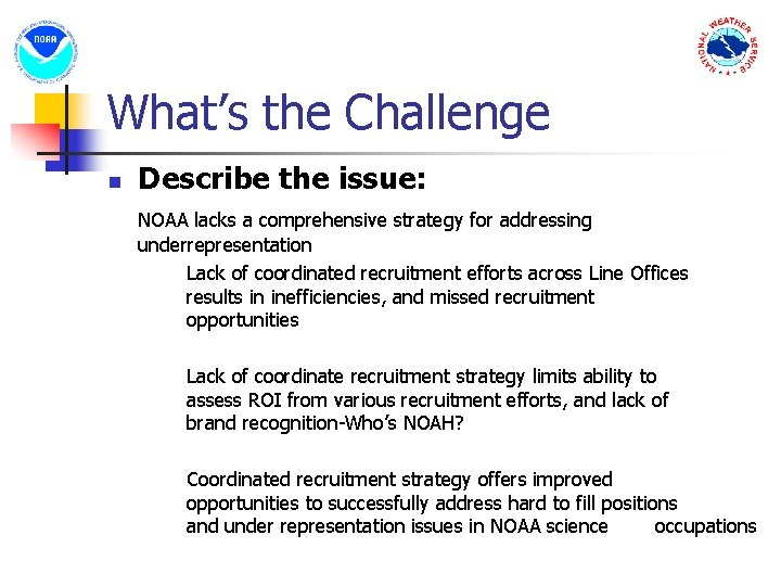 What's the Challenge n Describe the issue: NOAA lacks a comprehensive strategy for addressing