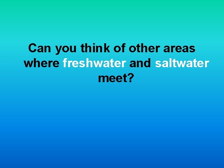 Can you think of other areas where freshwater and saltwater meet?