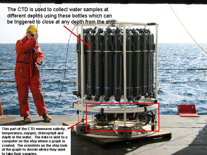 The CTD is used to collect water samples at different depths using these bottles