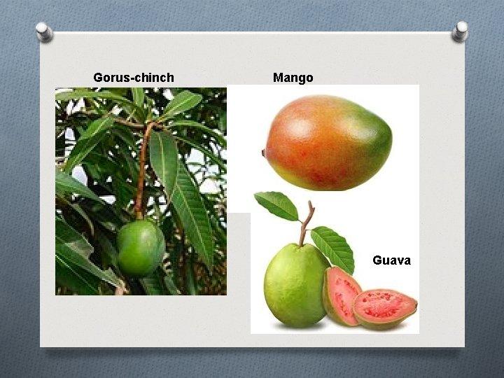 Gorus-chinch Mango Guava